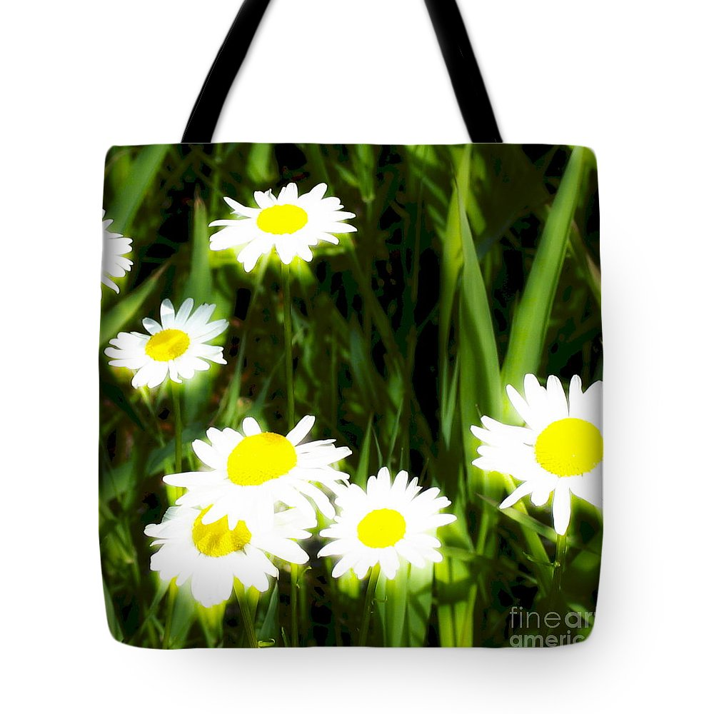 Daisies Tote Bag featuring the photograph Daisy Dream by Idaho Scenic Images Linda Lantzy