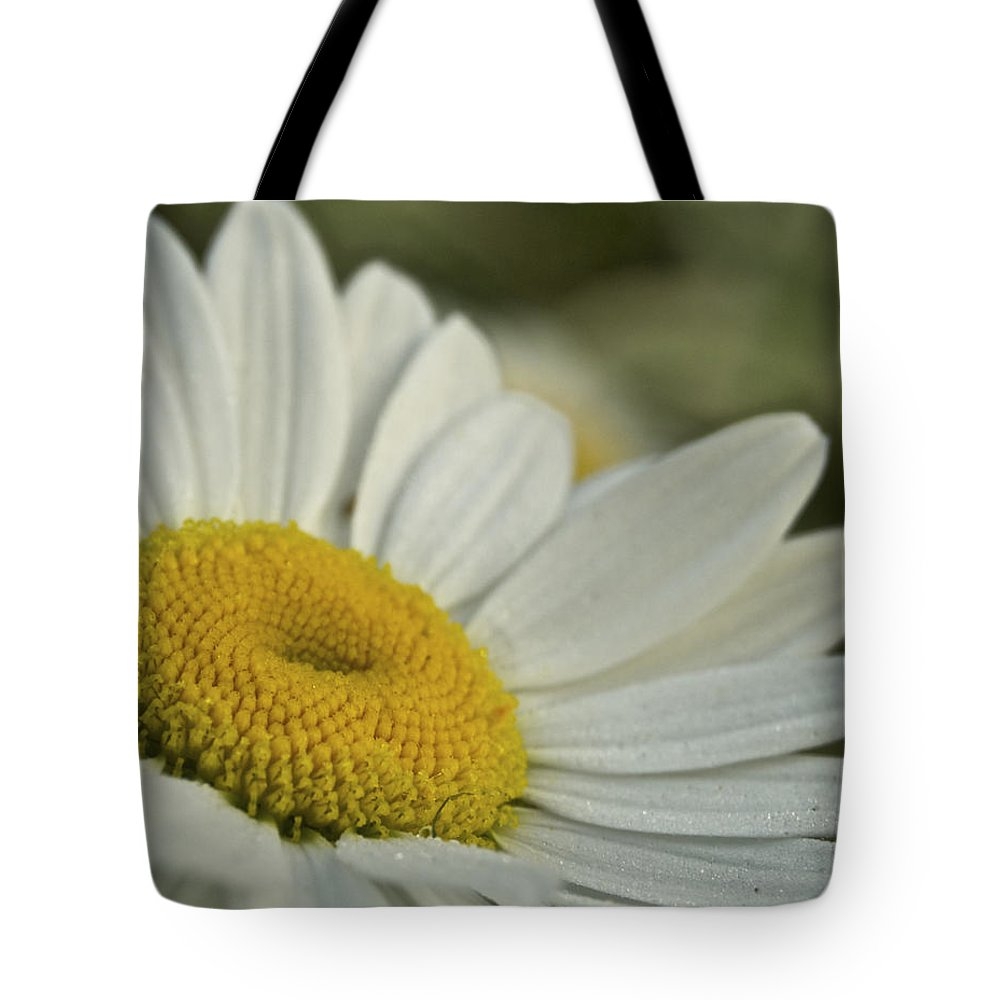 Flower Tote Bag featuring the photograph Daisy by Michael Peychich
