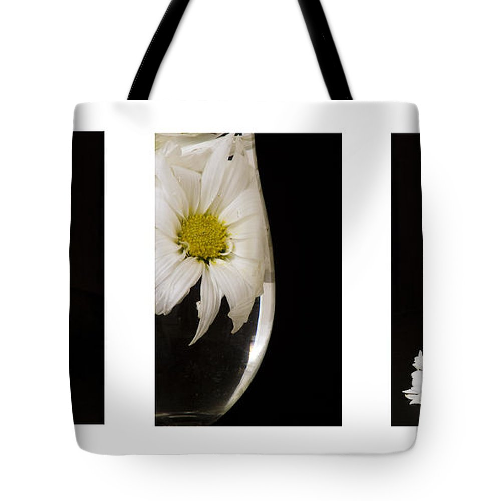 Flowers Tote Bag featuring the photograph Daisy Triptych by Ayesha Lakes