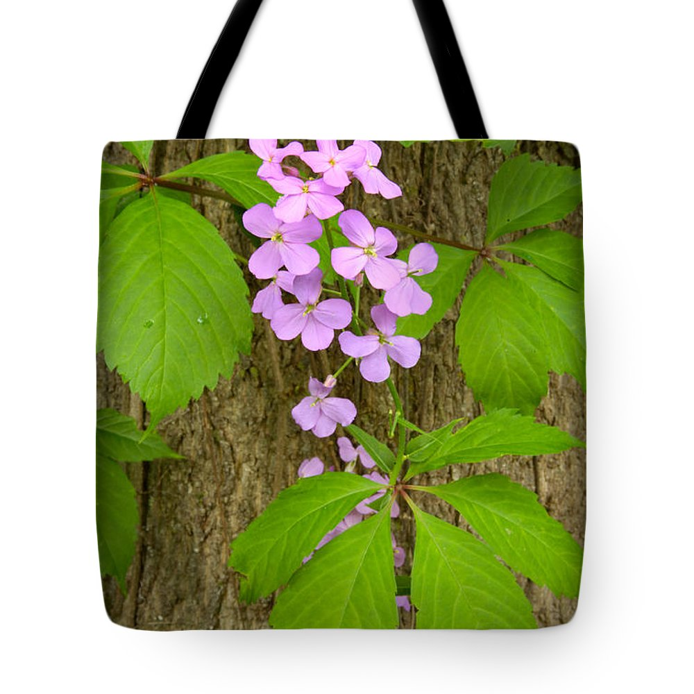 Wildflowers Tote Bag featuring the photograph Dame's Rocket Wildflowers And Creeping Vines by Irwin Barrett