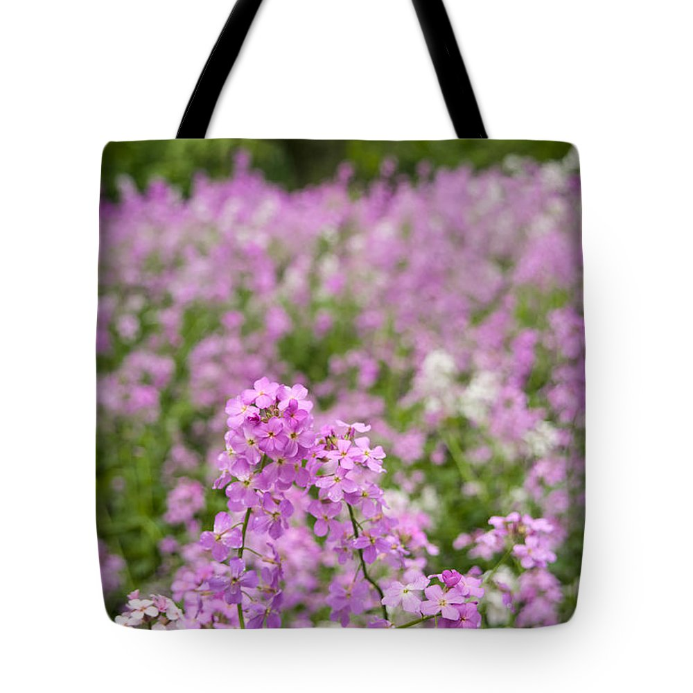 Tote Bag featuring the photograph Dame's Rocket Wildflowers And Oak Tree by Irwin Barrett