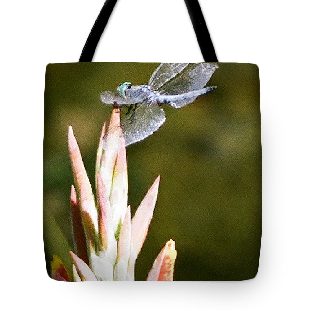 Dragonfly Tote Bag featuring the photograph Damselfly by Dean Triolo