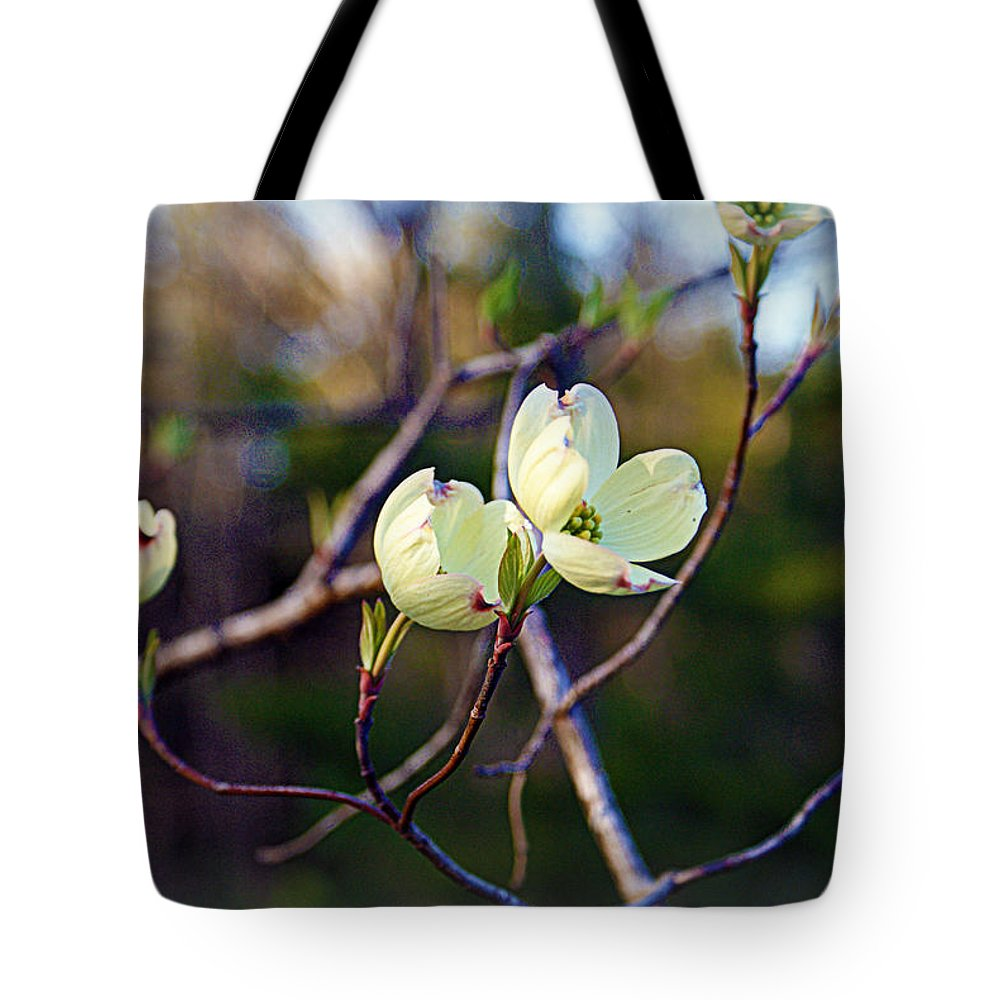 Dogwood Tote Bag featuring the photograph Dancing Dogwood Blooms by Cricket Hackmann