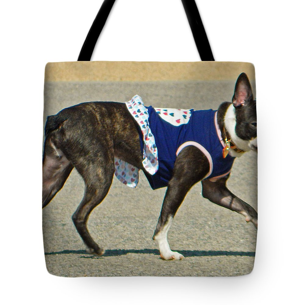 Dancing The Two Step At The Tidal Basin Tote Bag featuring the photograph Dancing The Two Step At The Tidal Basin by Emmy Vickers