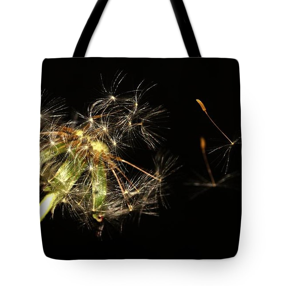 Flower Tote Bag featuring the pyrography Dandelion 2 by Robert Morin
