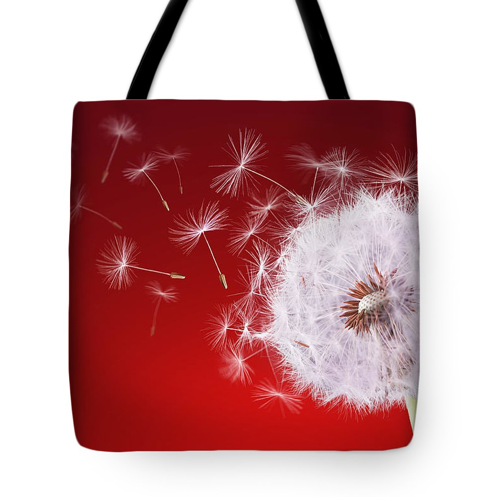 01dc1fa97d58 Abstract Tote Bag featuring the photograph Dandelion Flying On Reed  Background by Bess Hamiti