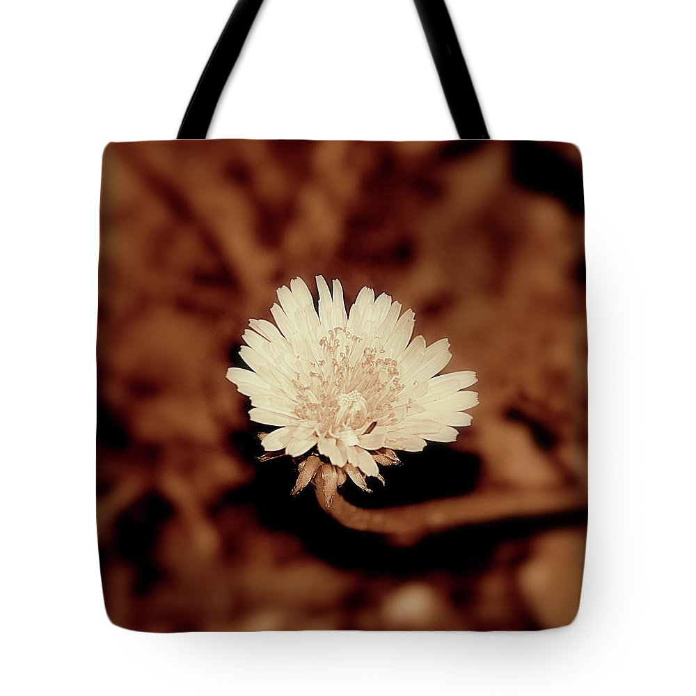 Flower Tote Bag featuring the photograph Dandelion by Frances Lewis