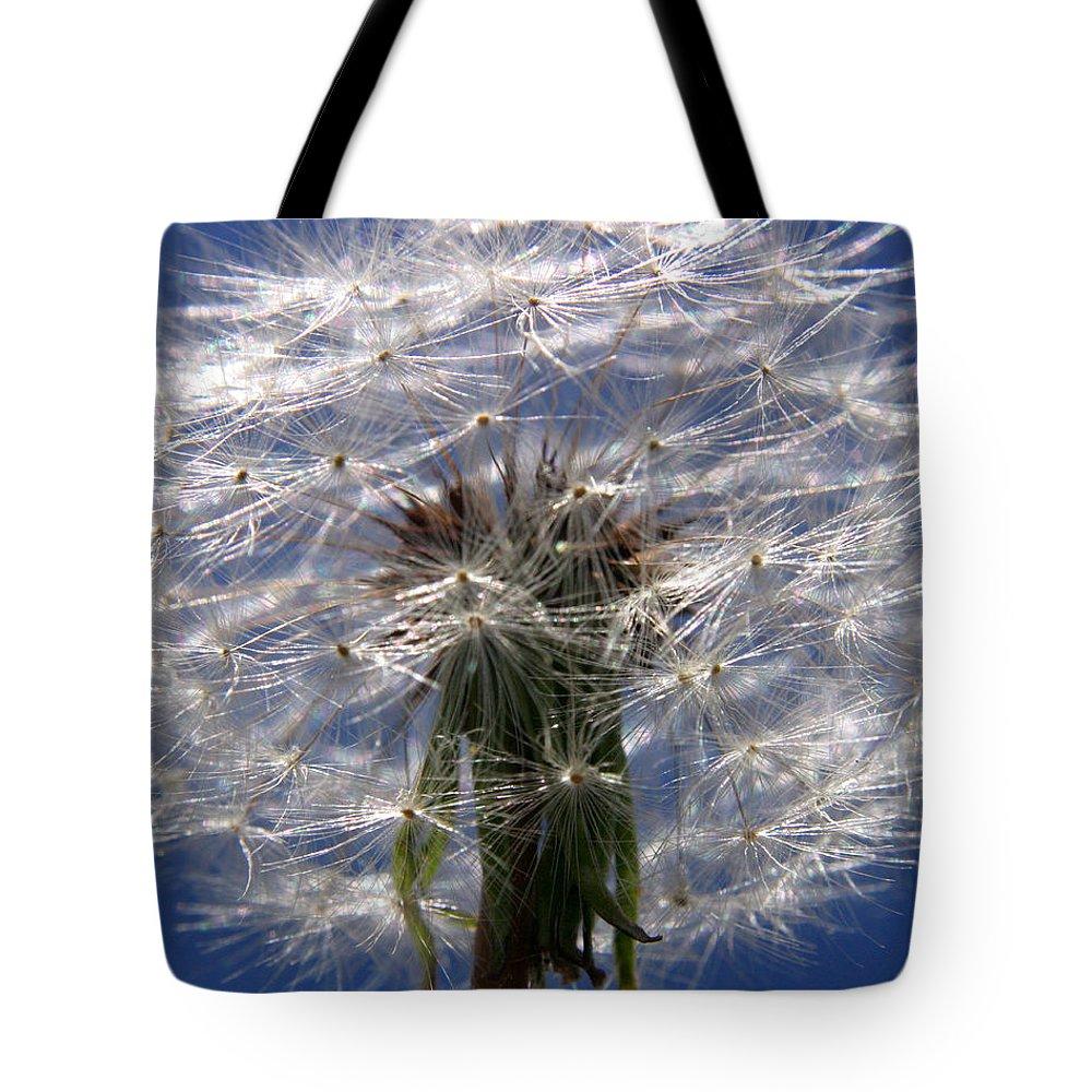 Dandelion Tote Bag featuring the photograph Dandelion by Ralph A Ledergerber-Photography