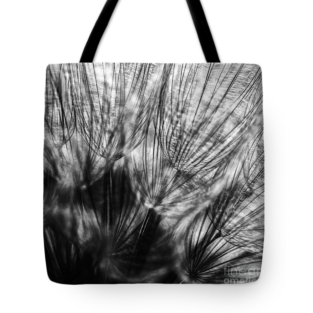 Allenfoto Tote Bag featuring the photograph Dandelion Seeds I by Brad Allen Fine Art