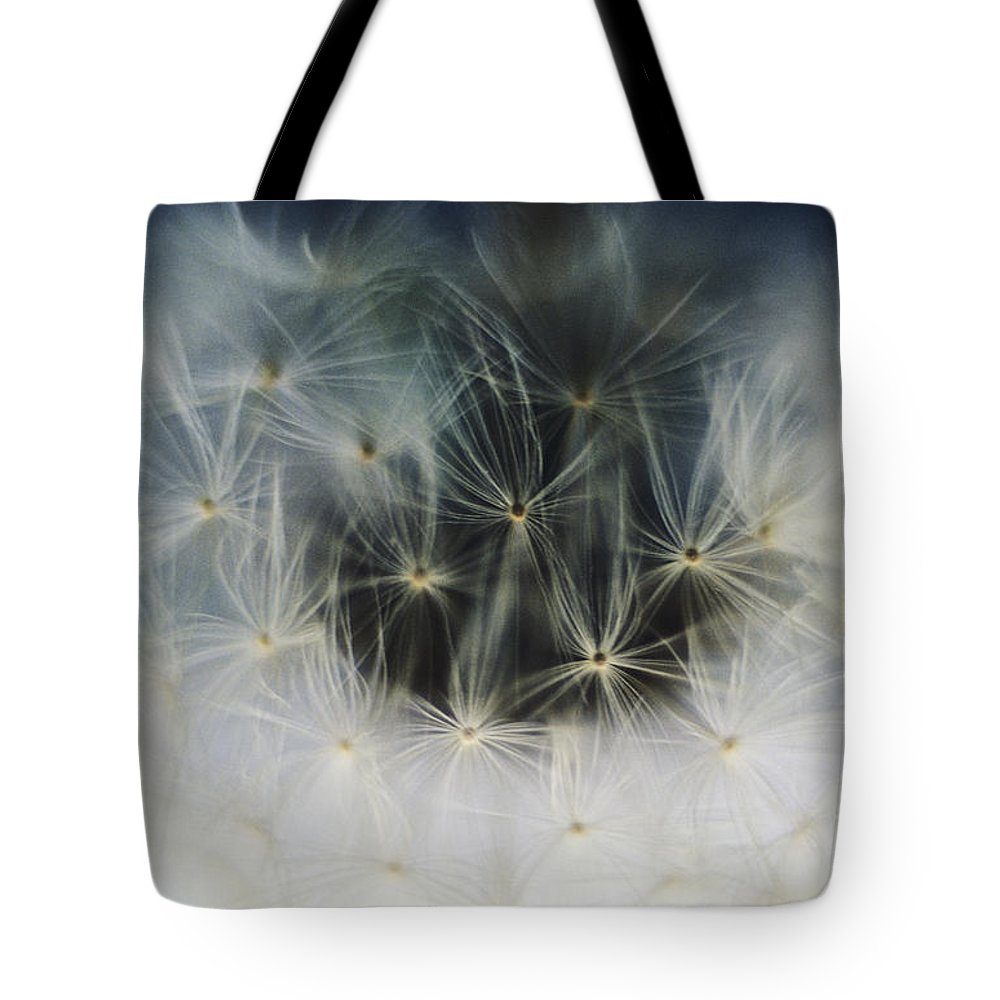 Abstract Tote Bag featuring the photograph Dandelion Seeds by Larry Dale Gordon - Printscapes