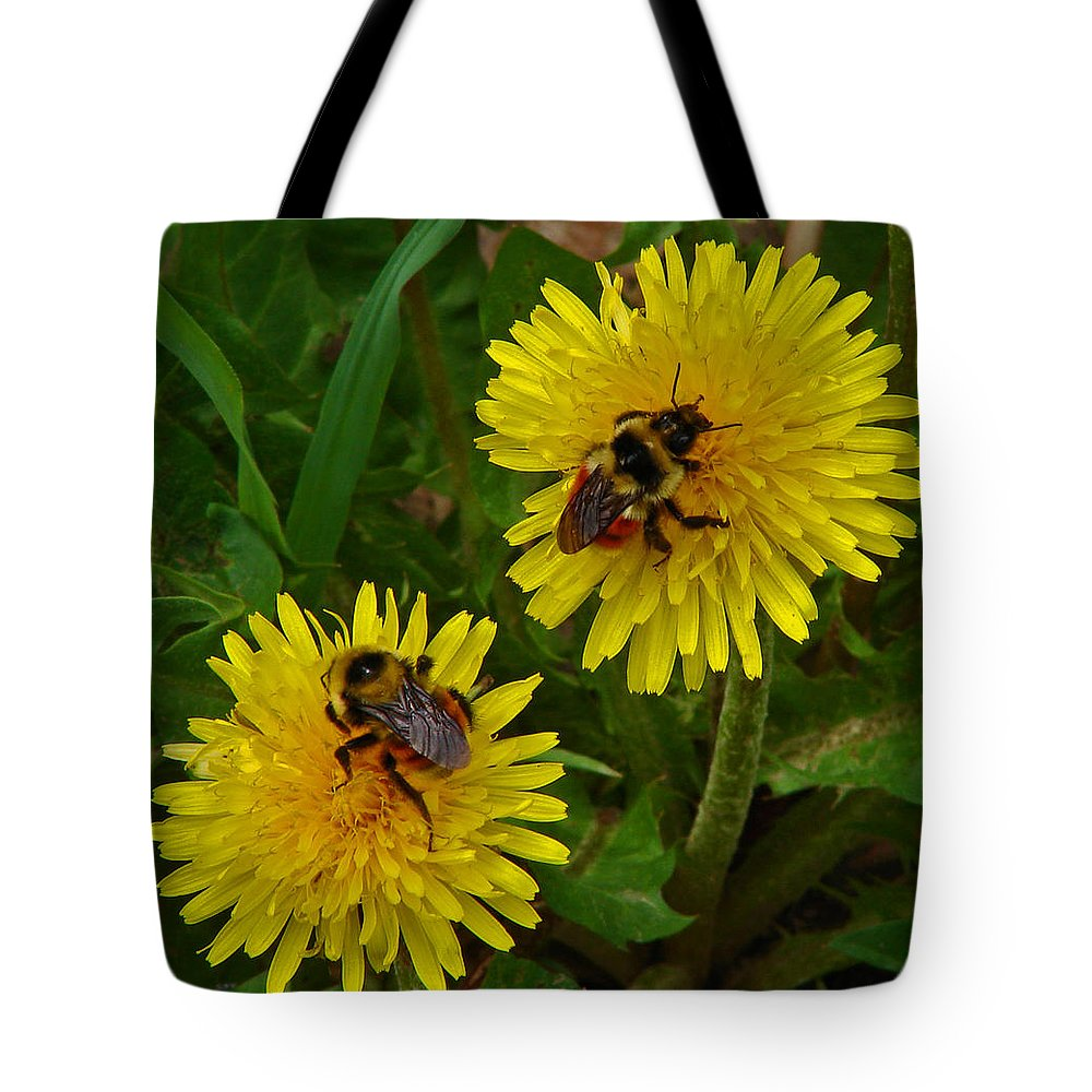 Dandelion Tote Bag featuring the photograph Dandelions And Bees by Heather Coen