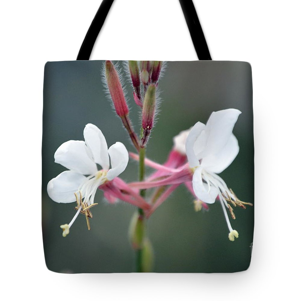 Tote Bag featuring the photograph Danza De Angeles by Lenin Caraballo