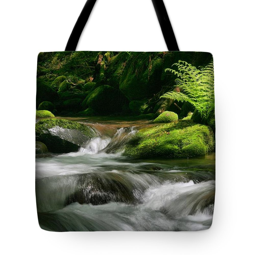 Green Tote Bag featuring the photograph Dappled Green by Winston Rockwell
