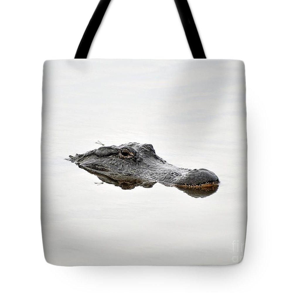 American Alligator Tote Bag featuring the photograph Daring Damselfly by Al Powell Photography USA