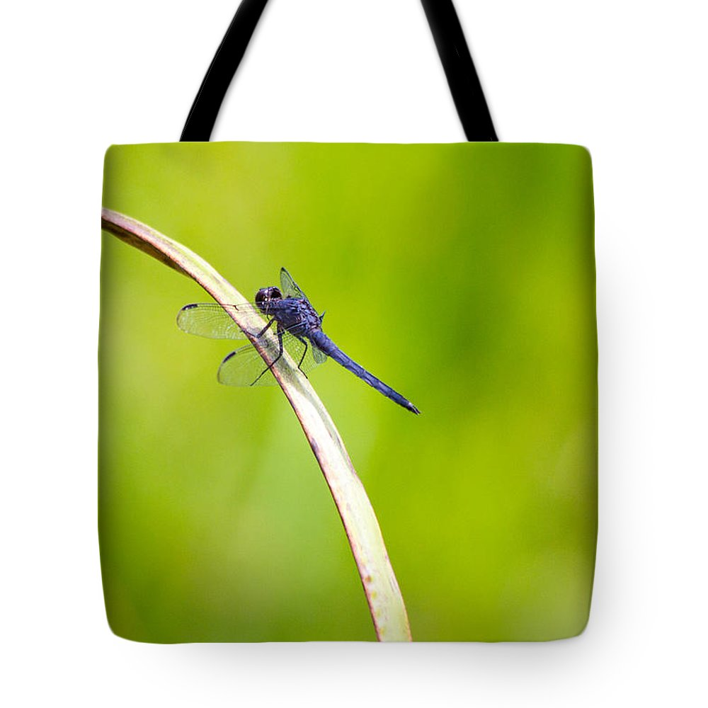 Blue Tote Bag featuring the photograph Dark Blue by Rebecca Raybon