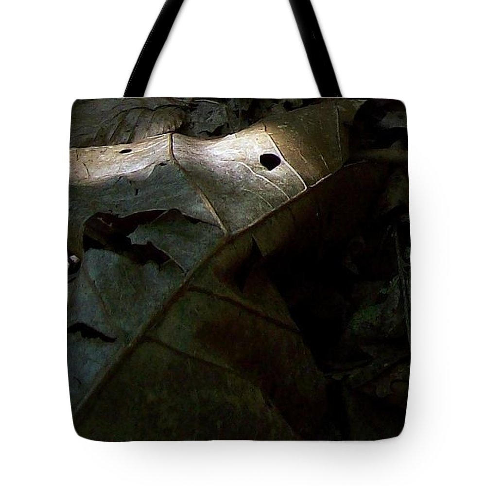 Leaves Woods Forest Summer Fall Tote Bag featuring the photograph Dark Leaves by Wolfgang Schweizer