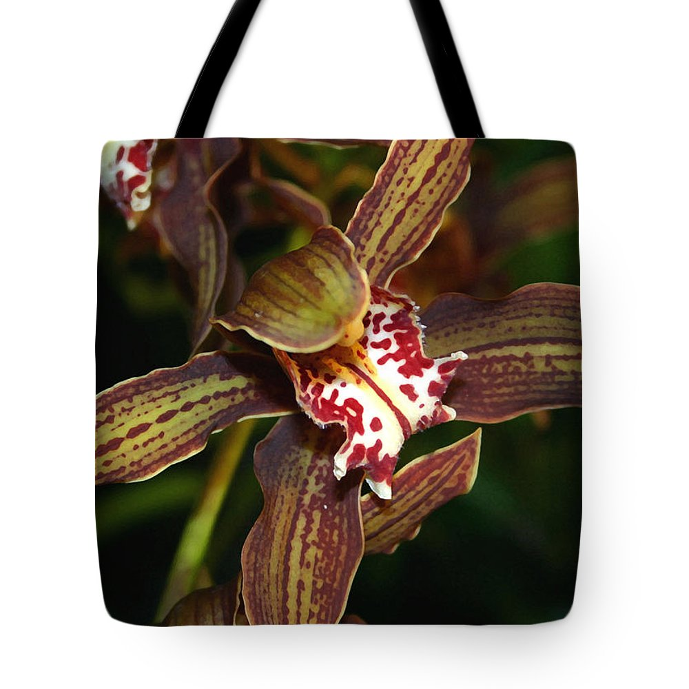 Orchid Tote Bag featuring the photograph Dark Orchid by Mary Haber