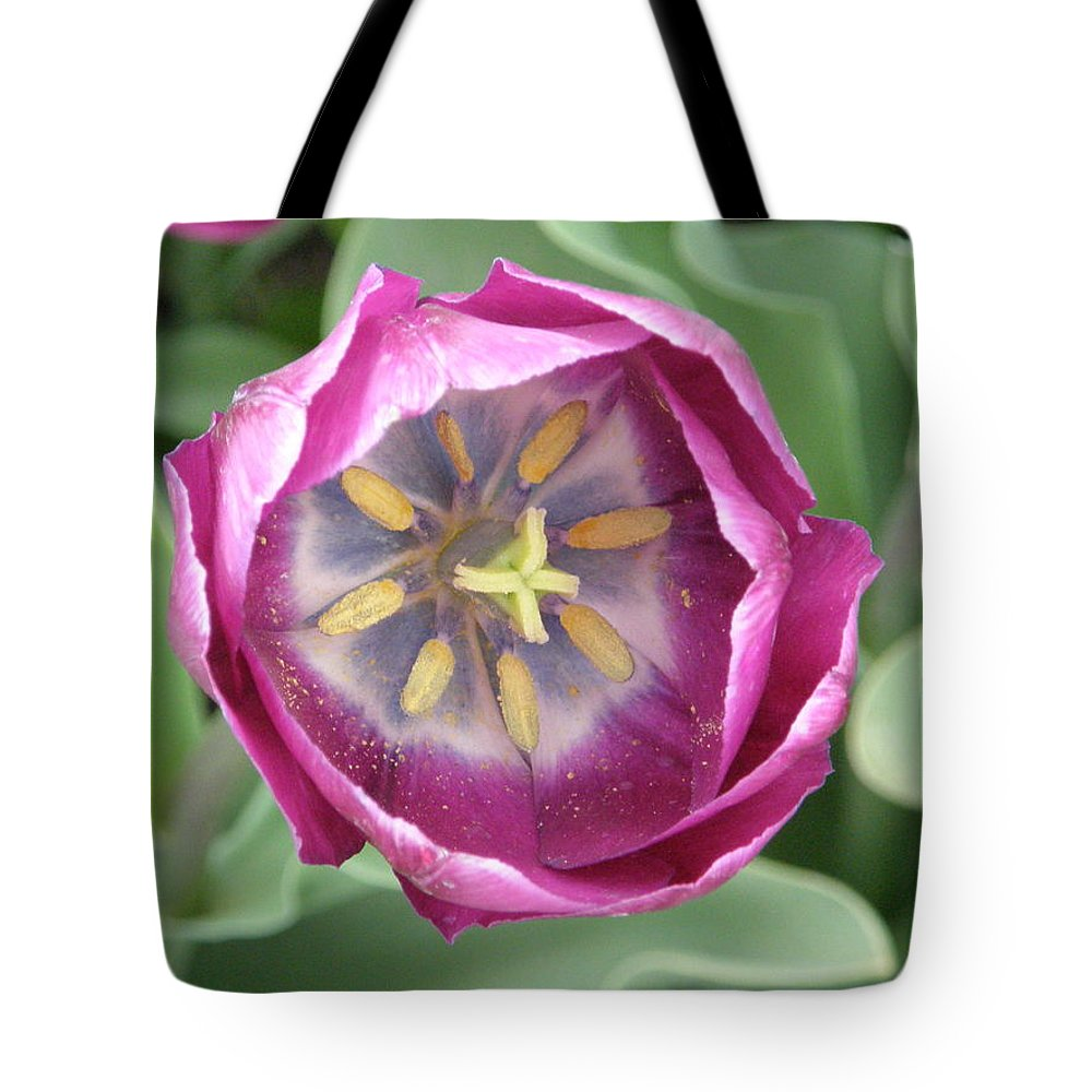 Dark Pink Tote Bag featuring the photograph Dark Pink Tulip by Alice Markham