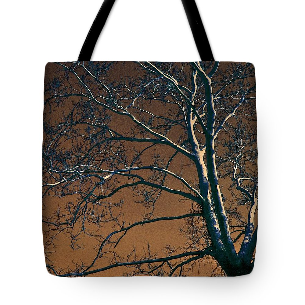 Tree Tote Bag featuring the photograph Dark Woods II by Betty Northcutt