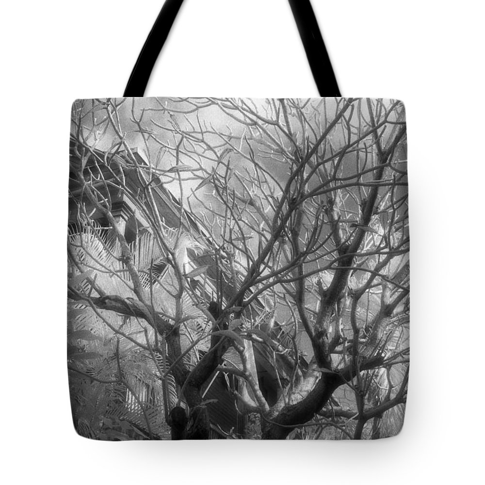 Infrared Photography Tote Bag featuring the photograph Day Dream by Richard Rizzo