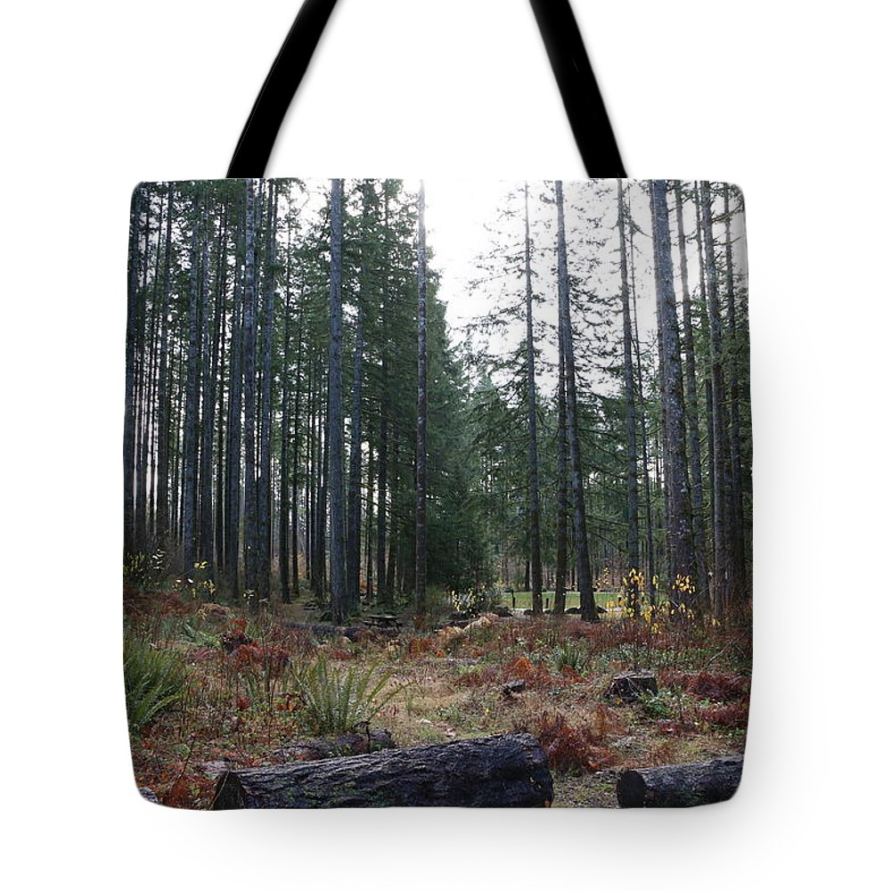 Trees Tote Bag featuring the photograph Day In The Park by Dani Keating
