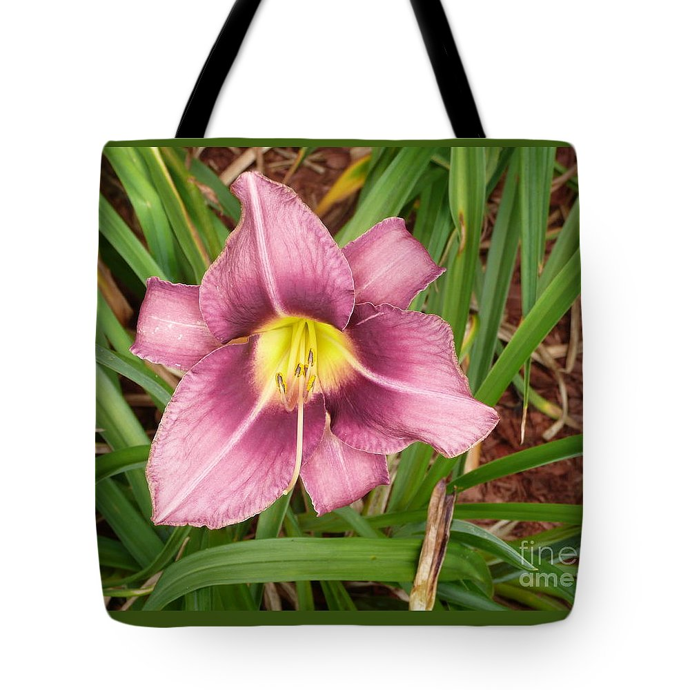 Flowers Tote Bag featuring the photograph Daylilly by Barb Montanye Meseroll