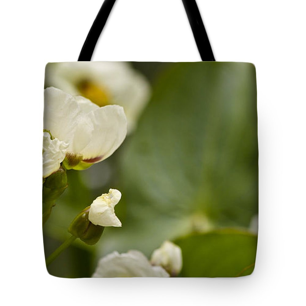 J Paul Getty Tote Bag featuring the photograph Days Work by Teresa Mucha