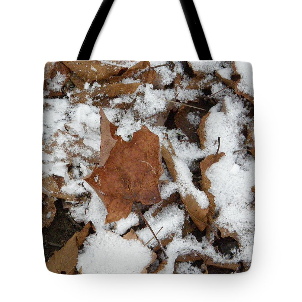 Leaves Tote Bag featuring the photograph Dead Leaves In The Snow by Alice Markham