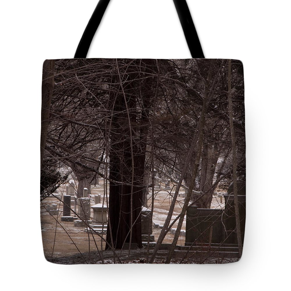 Photography Tote Bag featuring the photograph Dead Of Winter by Steven Natanson