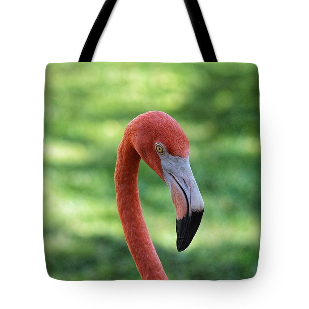 Flamingo Tote Bag featuring the photograph Dead Stare by Joseph Caban