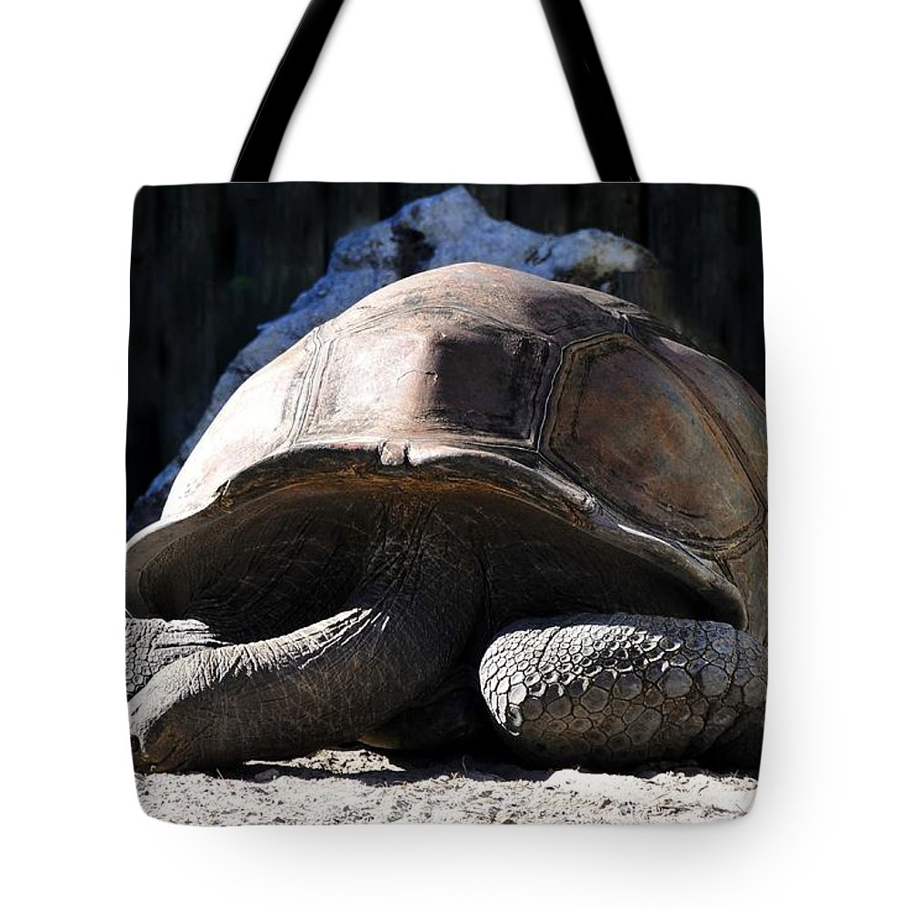 Tortoise Tote Bag featuring the photograph Dead Tired by David Lee Thompson