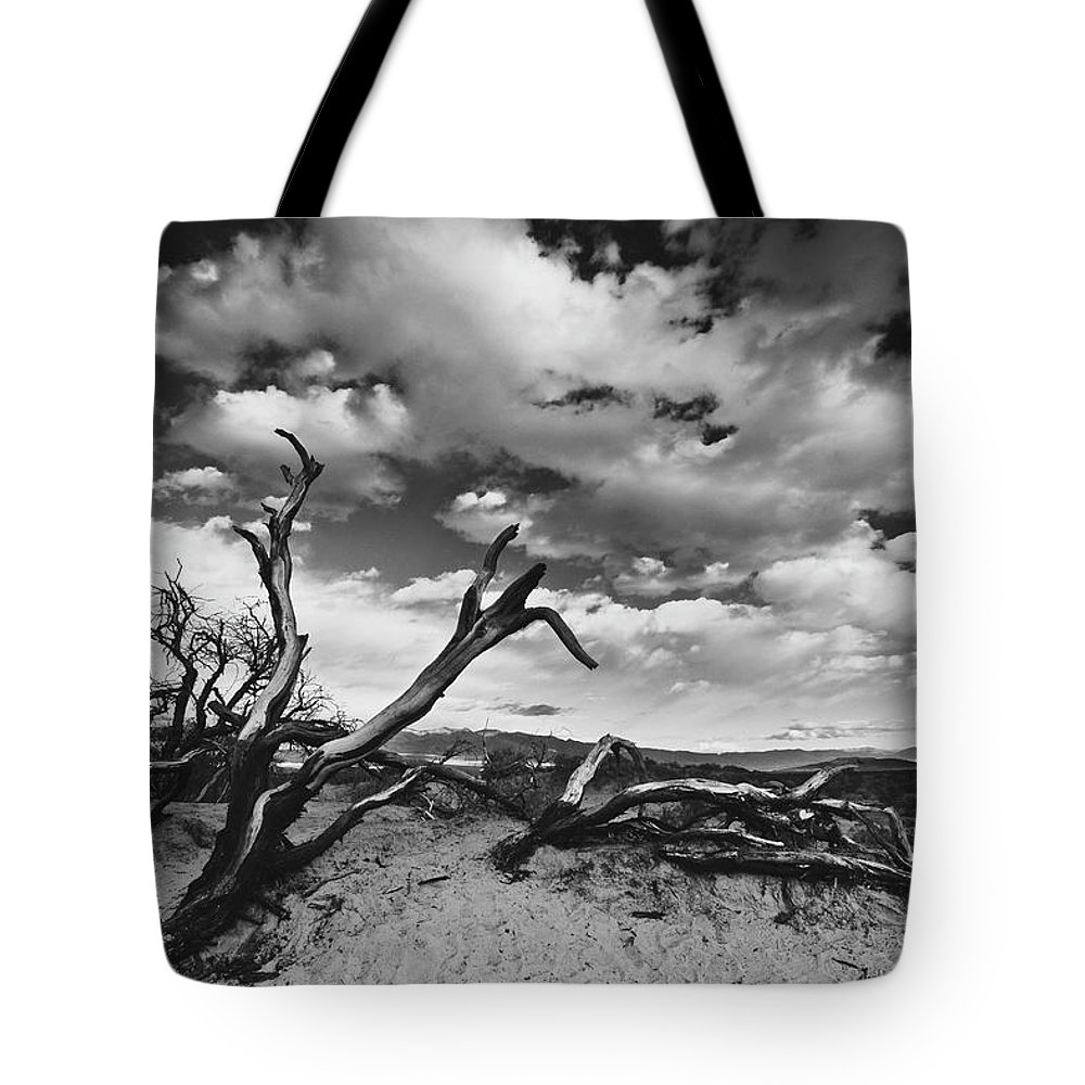 Landscape Tote Bag featuring the photograph Dead Trees at Mesquite Dunes by Nathan Spotts
