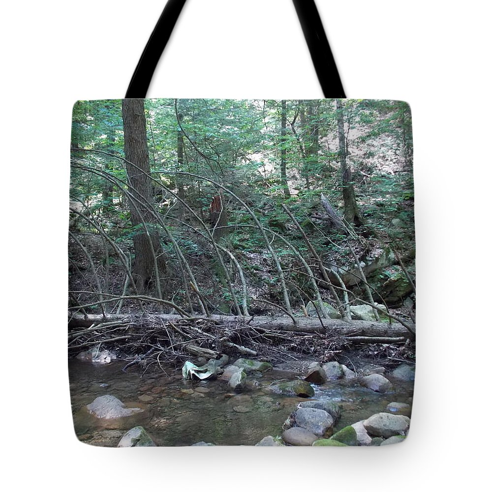 North Adams Tote Bag featuring the photograph Dead Wood by Catherine Gagne