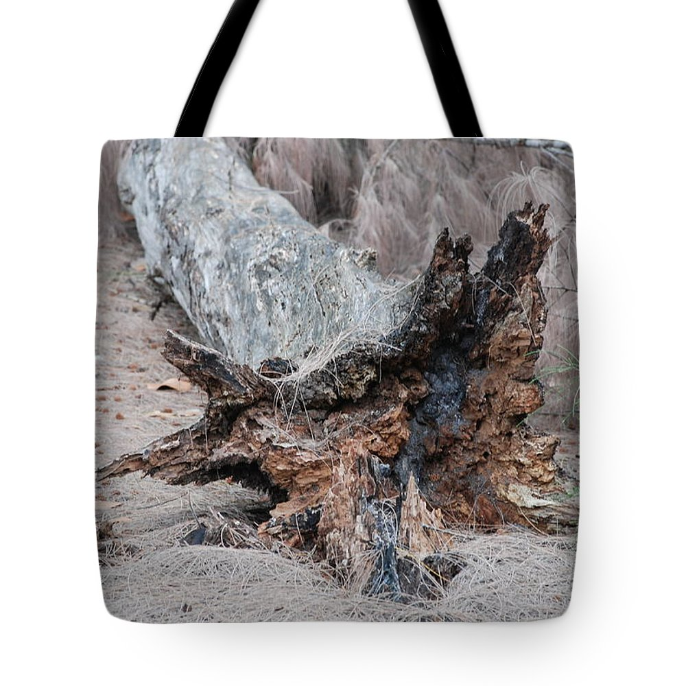 Trees Tote Bag featuring the photograph Dead Wood In Color by Rob Hans