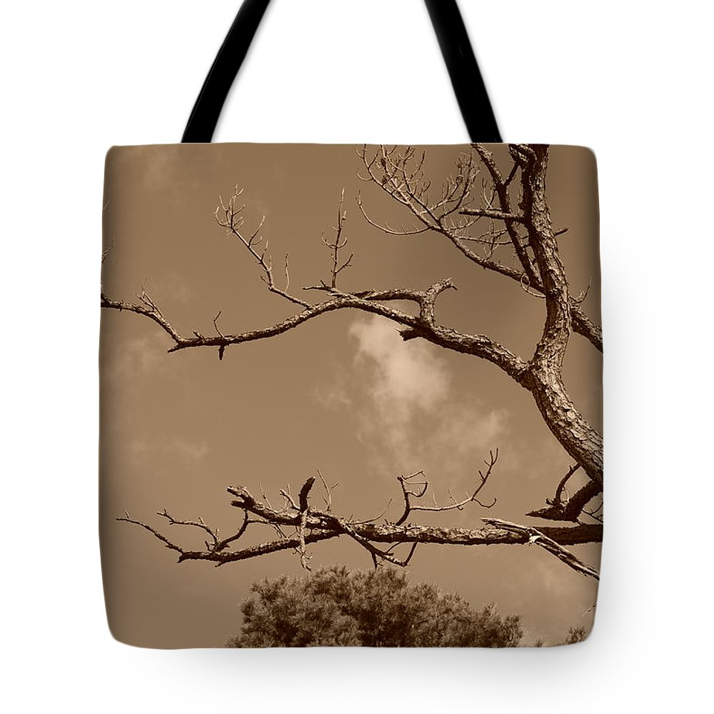 Sepia Tote Bag featuring the photograph Dead Wood by Rob Hans
