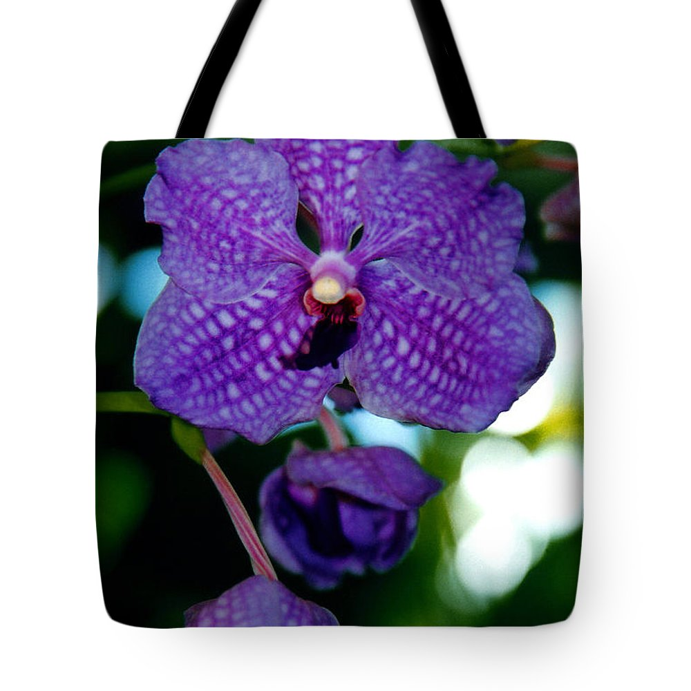 Orchid Tote Bag featuring the photograph Deep Blue Orchid by Susanne Van Hulst