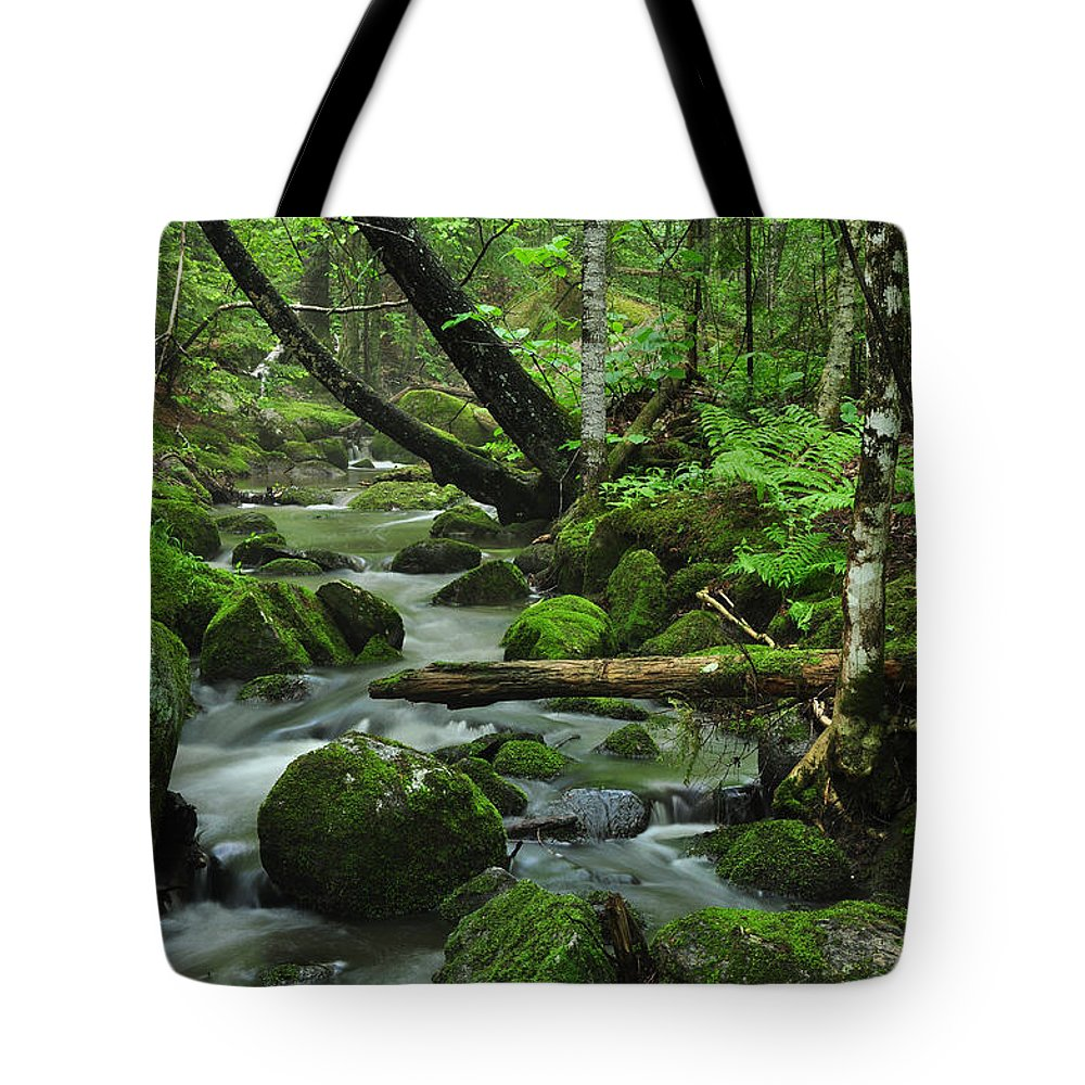 Stream Tote Bag featuring the photograph Deep Woods Stream by Glenn Gordon