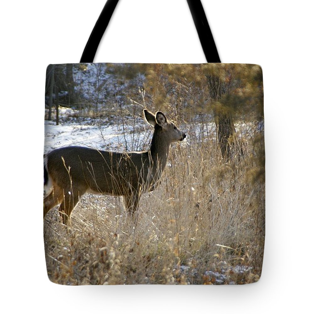 Deer Tote Bag featuring the photograph Deer in Morning light by Toni Berry