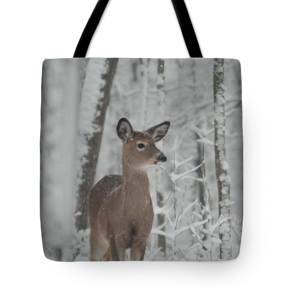 Deer Tote Bag featuring the photograph Deer In The Snow by Douglas Barnett