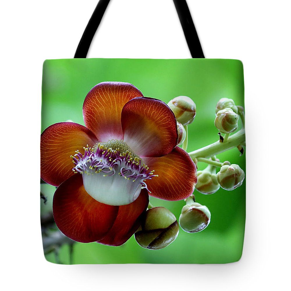 Flower Tote Bag featuring the photograph Delicately Veined ... With Tentacles by Debi Dalio