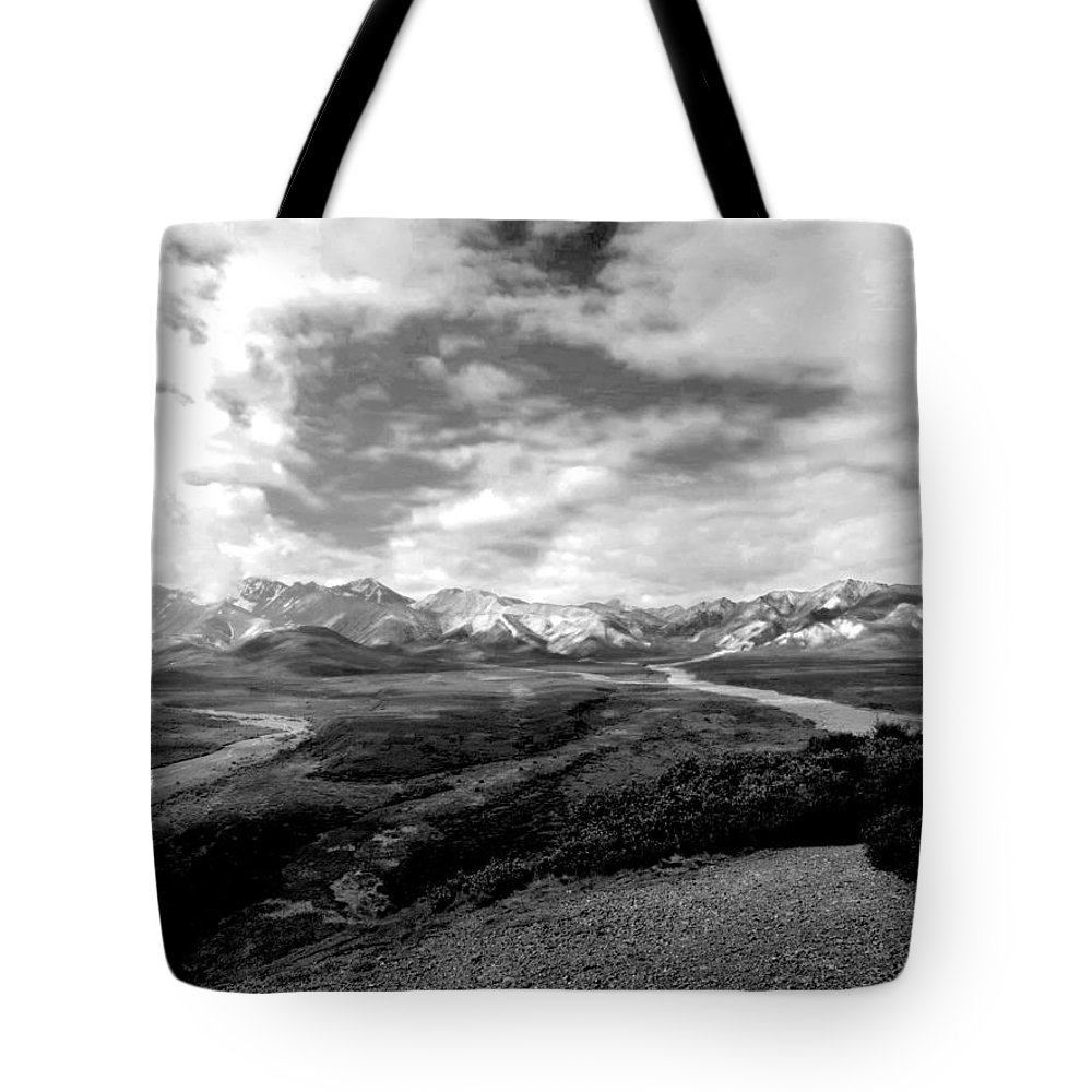 Alaska Tote Bag featuring the photograph Denali National Park 4 by Dick Goodman