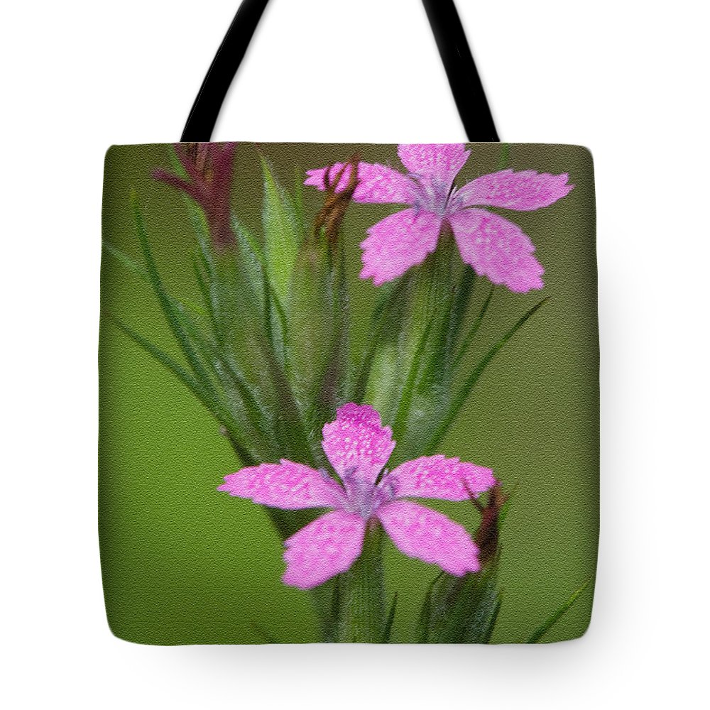 Clarence Holmes Tote Bag featuring the photograph Deptford Pink by Clarence Holmes