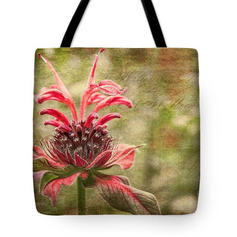 Beebalm Tote Bag featuring the photograph Desert Longing by Jean OKeeffe Macro Abundance Art