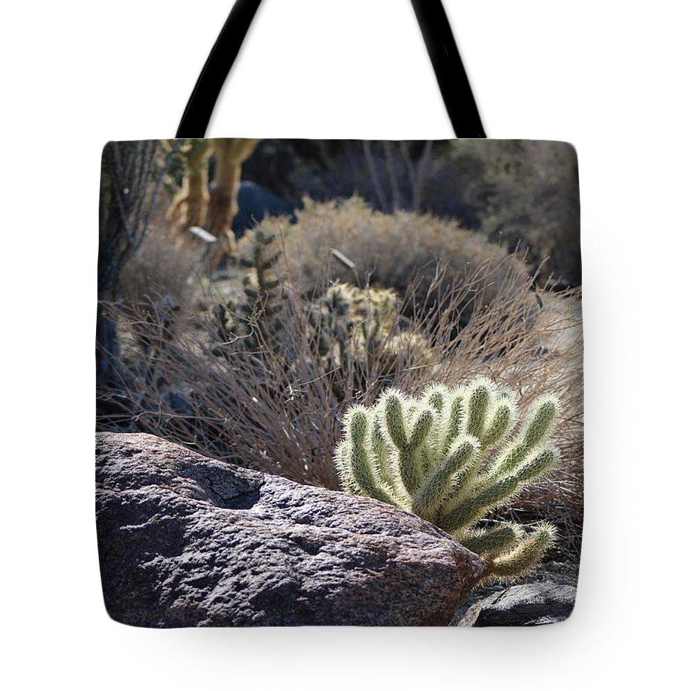 Desert Scene Tote Bag featuring the photograph Desert Scene In High Noon Sun by Colleen Cornelius
