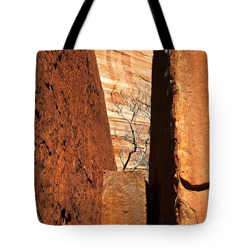 Vise Tote Bag featuring the photograph Desert Vise by Mike Dawson
