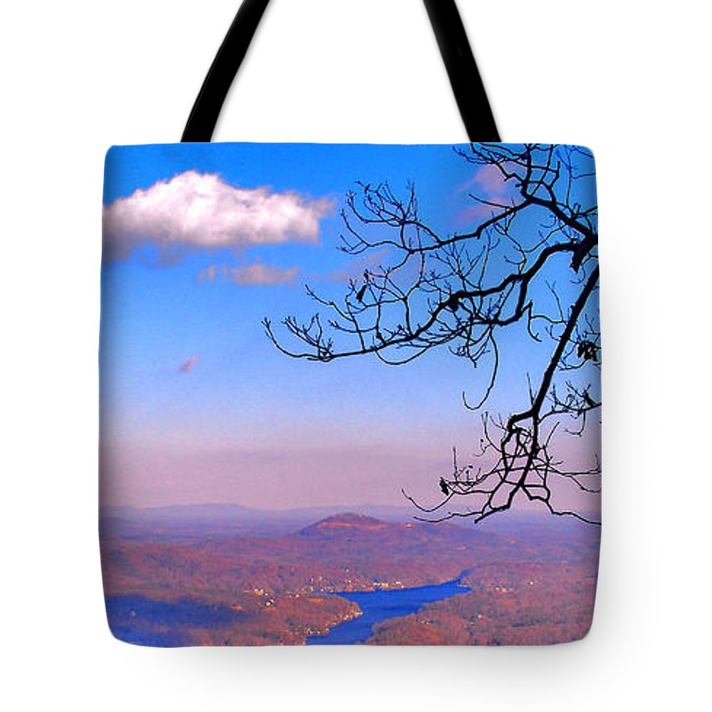 Landscape Tote Bag featuring the photograph Detail From Reaching For A Cloud by Steve Karol
