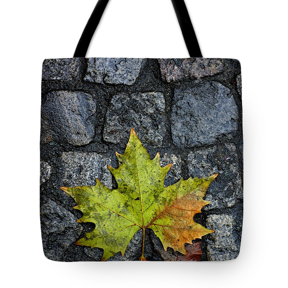 Nature Tote Bag featuring the photograph Deville by Skip Hunt