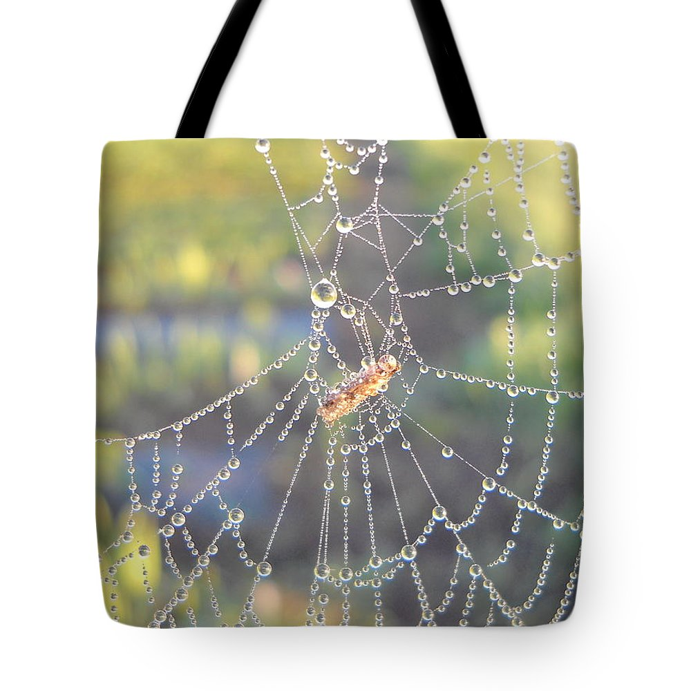 Morning Dew Tote Bag featuring the photograph Dew Drops On A Spider Web by Kent Lorentzen
