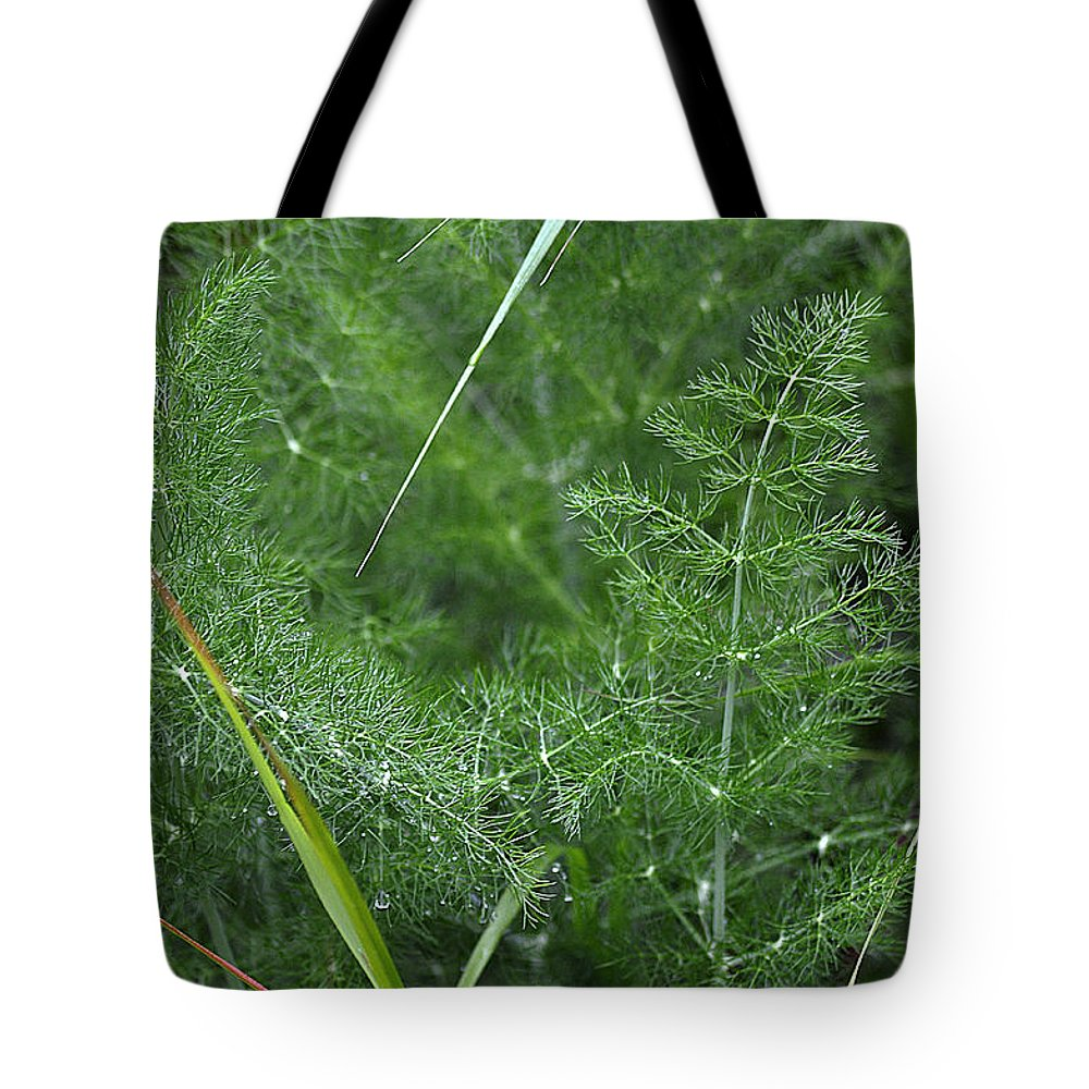 Clay Tote Bag featuring the photograph Dew On The Ferns by Clayton Bruster