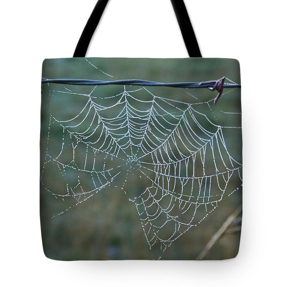 Spider Tote Bag featuring the photograph Dew On The Web by Douglas Barnett